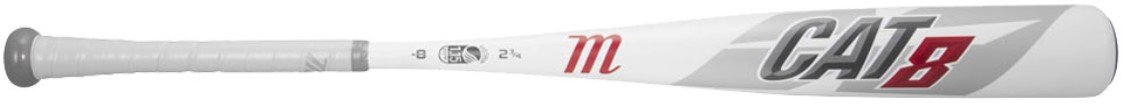 Best 2019 Bat for 8 Year Old
